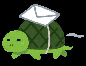 マイペースの亀