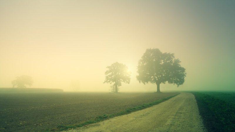 dawn-3804124_1280